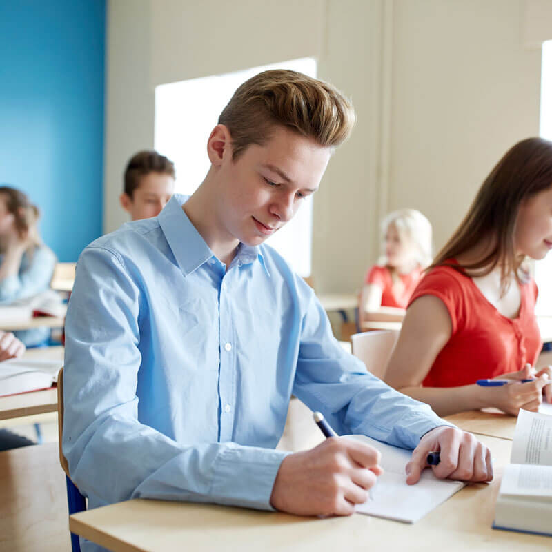 gcse exam private tuition
